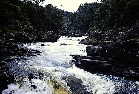 Madagascar 15a, river in Ranomafana fore