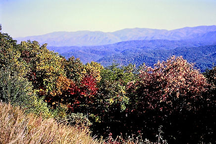 Tennessee 16a, Great Smoky Mts, 10_87.jp