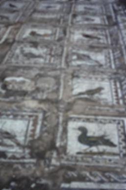Spain 30aa, Mosaic, Italica, Seville, 9_