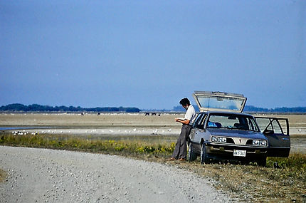 Dave 01a, by car, Chincoteague, Maryland
