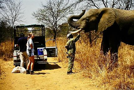 Zimbabwe 07a, Tony & Julia & elephant, 9