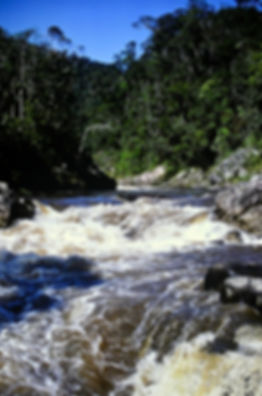 Madagascar 16a, river in Ranomafana fore