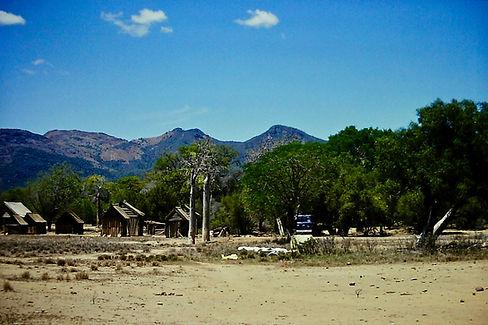 Madagascar 26a, Hazofotsy, spiny forest,