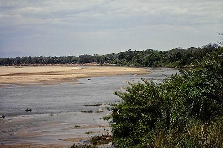 Madagascar 12a, Berenty, 11_88.jpg