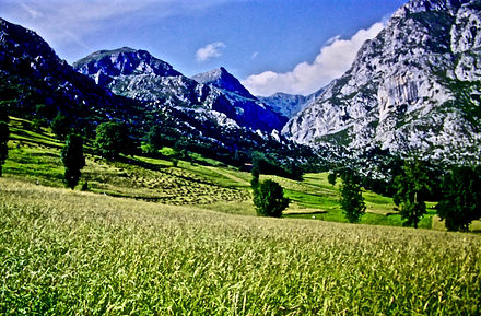 Spain 47aa, hay meadows, Picos de Europe