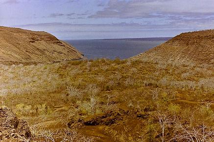 Galapagos 20a, Isabela, 30_7_86.jpg