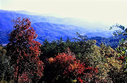 Tennessee 19a, Great Smoky Mts, 10_87.jp