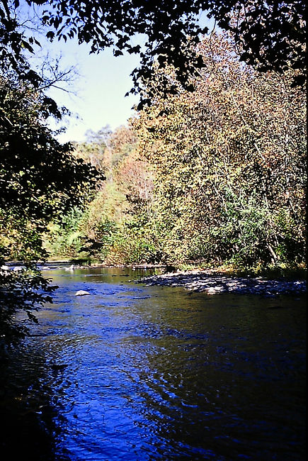 Tennessee 04a, Great Smoky Mts, 10_87.jp
