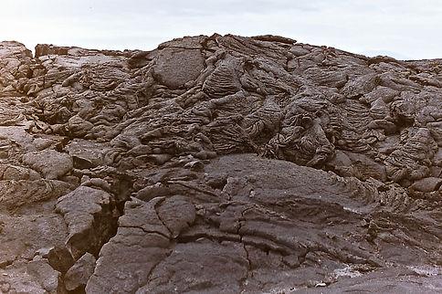 Galapagos 21a, Fernandina, 7_86.jpg