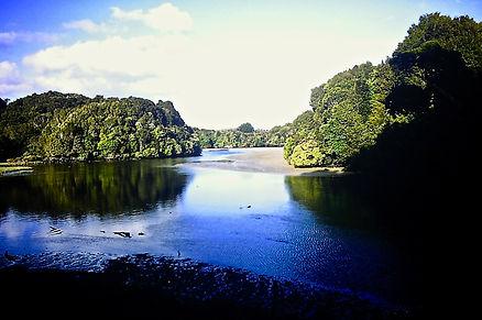 New Zealand 25a, Mill Creek, Stewart Isl