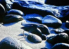 Lava Heron 01a, N. Seymour, Galapagos, 2