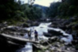 Madagascar 28a, Ranomafana, 11_88.jpg