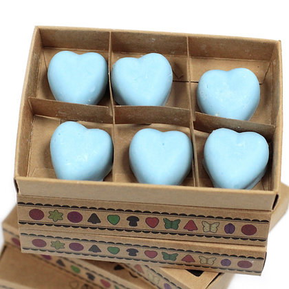Box of 6 Dewberry Scented Wax Melts