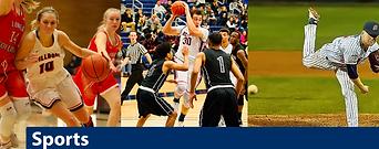 Bellevue College sports