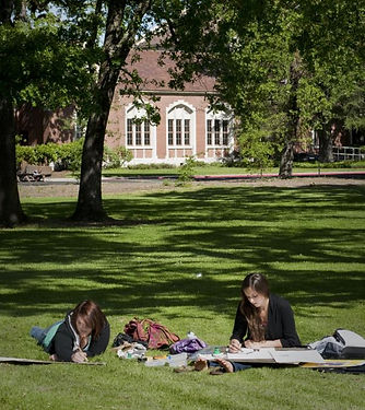 Lawn at Santa Rosa Junior College