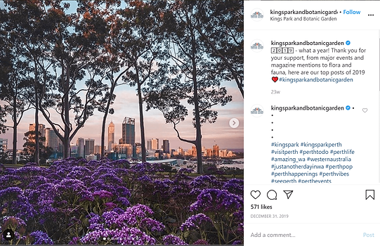 Kings Park and Botanic Garden-min.png