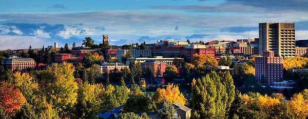 Washington-State-University-900x349.jpg