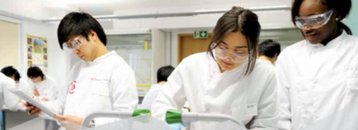 UEA foundation in science and medicine