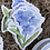 Thumbnail: Floral stickers