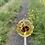 Thumbnail: Floral lollipop