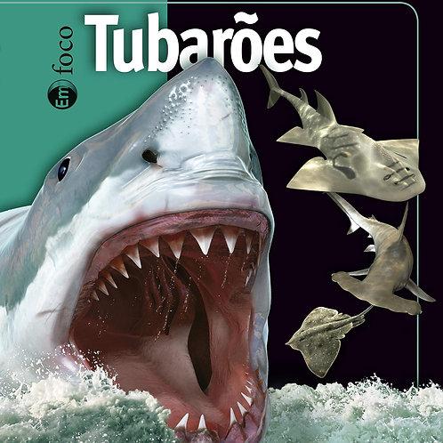 Em Foco - Tubarões