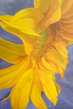 Sunflower SOLD