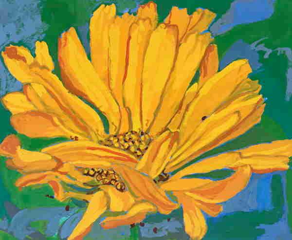 YellowFlower_S.JPG