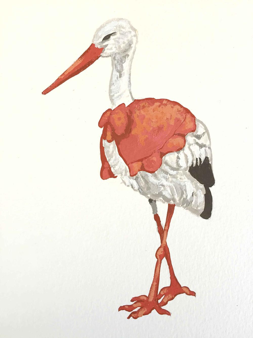 Stork_S.jpg
