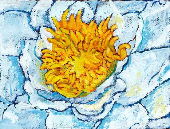 White Lotus 4