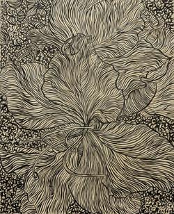 Lines Bauhinia SOLD