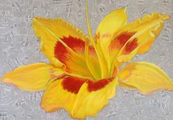 Yellow Lily __.jpg