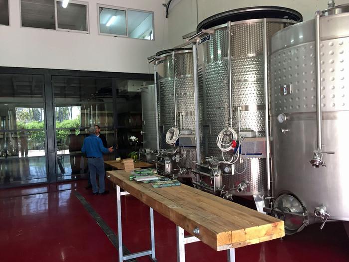 Les vins Margalit