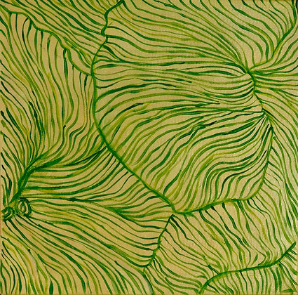 Light green petunia