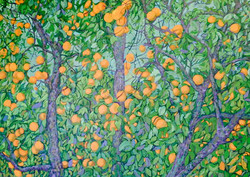 Three Orange Trees SOLD