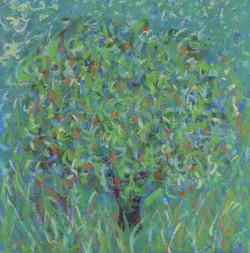 Orange Tree 6