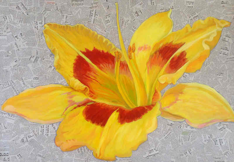 Yellow Lily _S.jpg