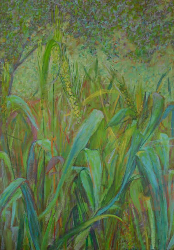 Blue Wheat