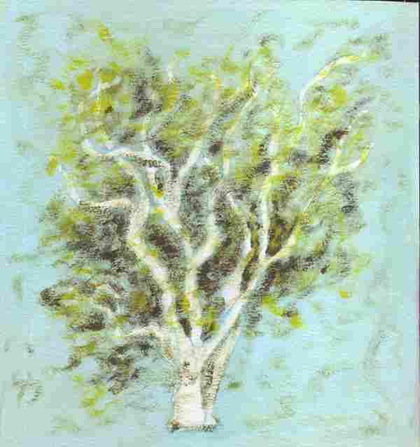 Orange Tree 8