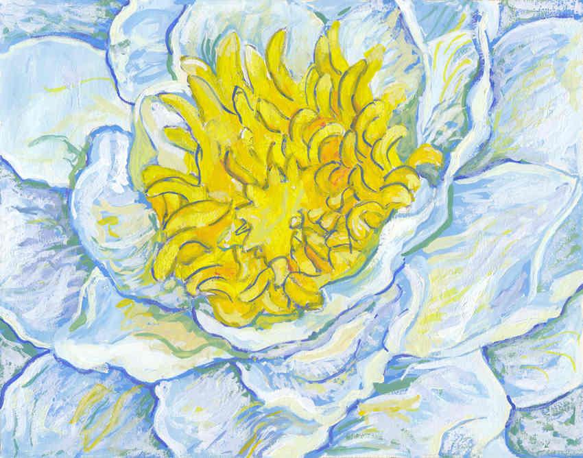 White Lotus_S.jpg