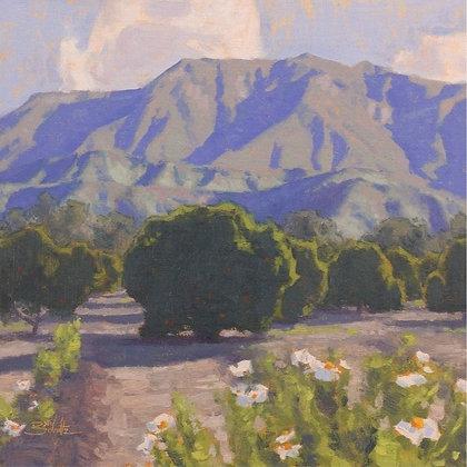 Landscape Painting Fundamentals with Dan Schultz