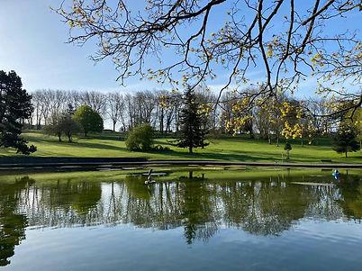Park Main Image.jpg