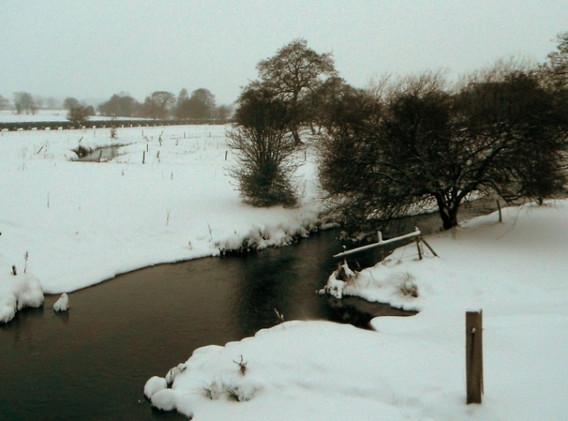 Snowy River Blithe.jpg