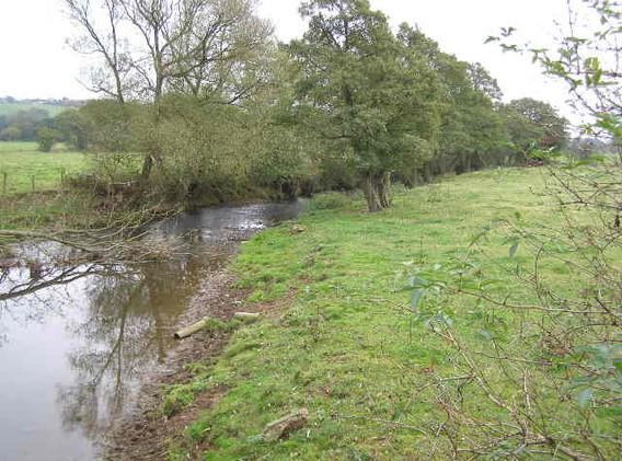 River Blithe 02.jpg