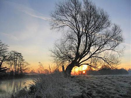 River Dove Scropton.jpg