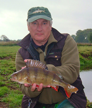 River Sow Perch.jpg
