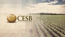 Credito: CESB - Comitê Estratégico Soja Brasil