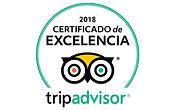 certificado excelencia.jpg