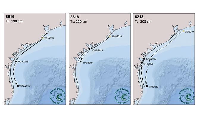 Maps.tiff