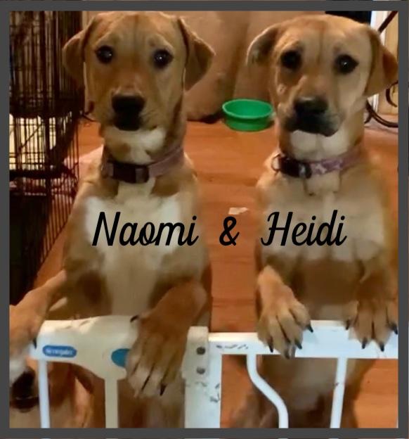 Heidi & Naomi  - F