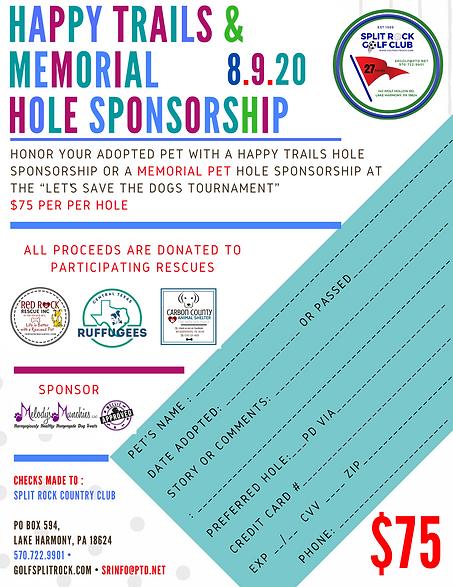 Hole Sponsor.png